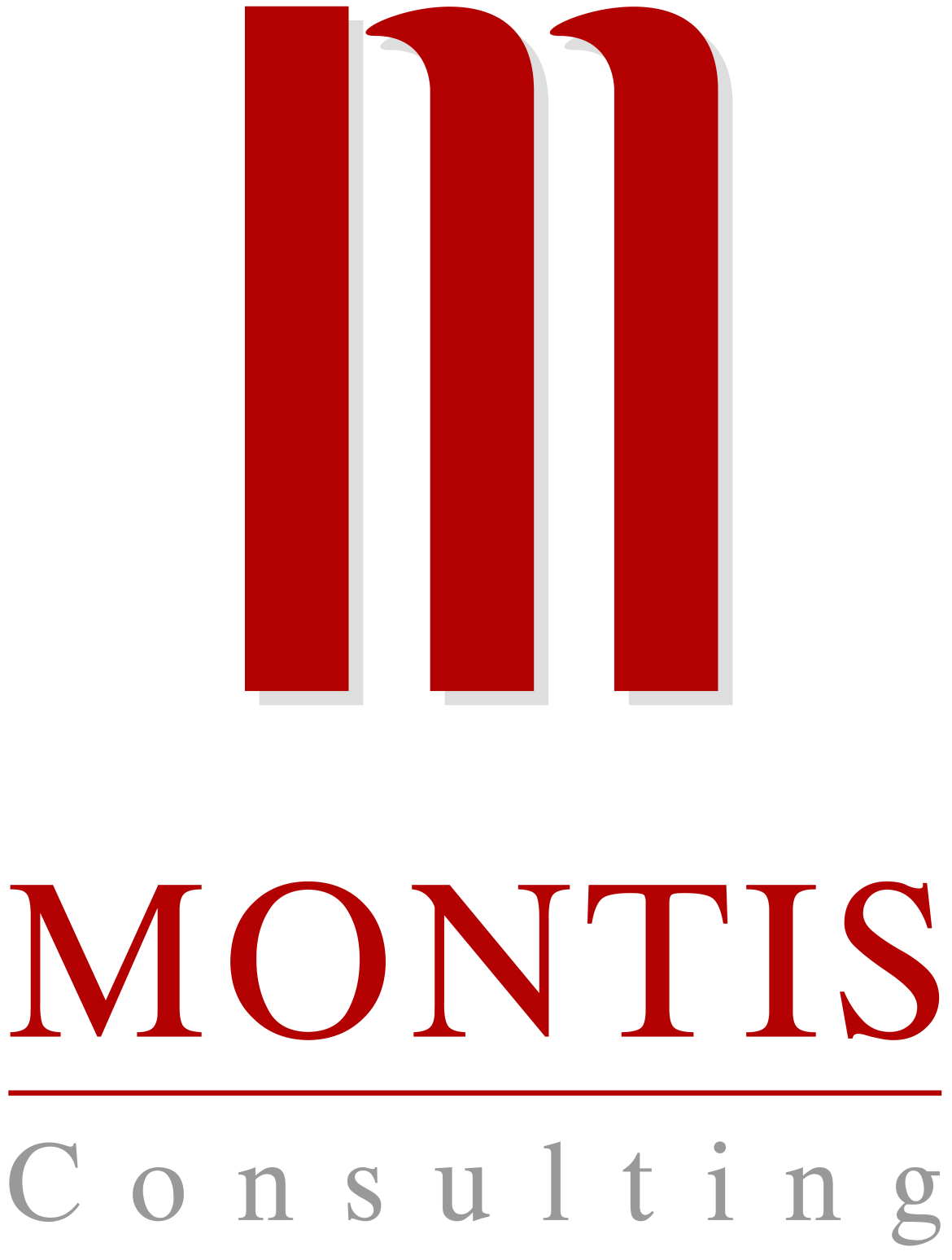 Logo of Montis Consulting AG
