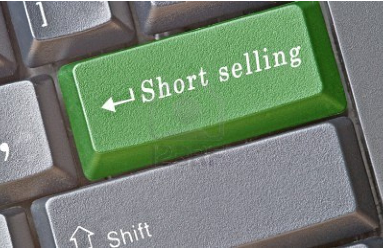 Article about An ode to short-sellers