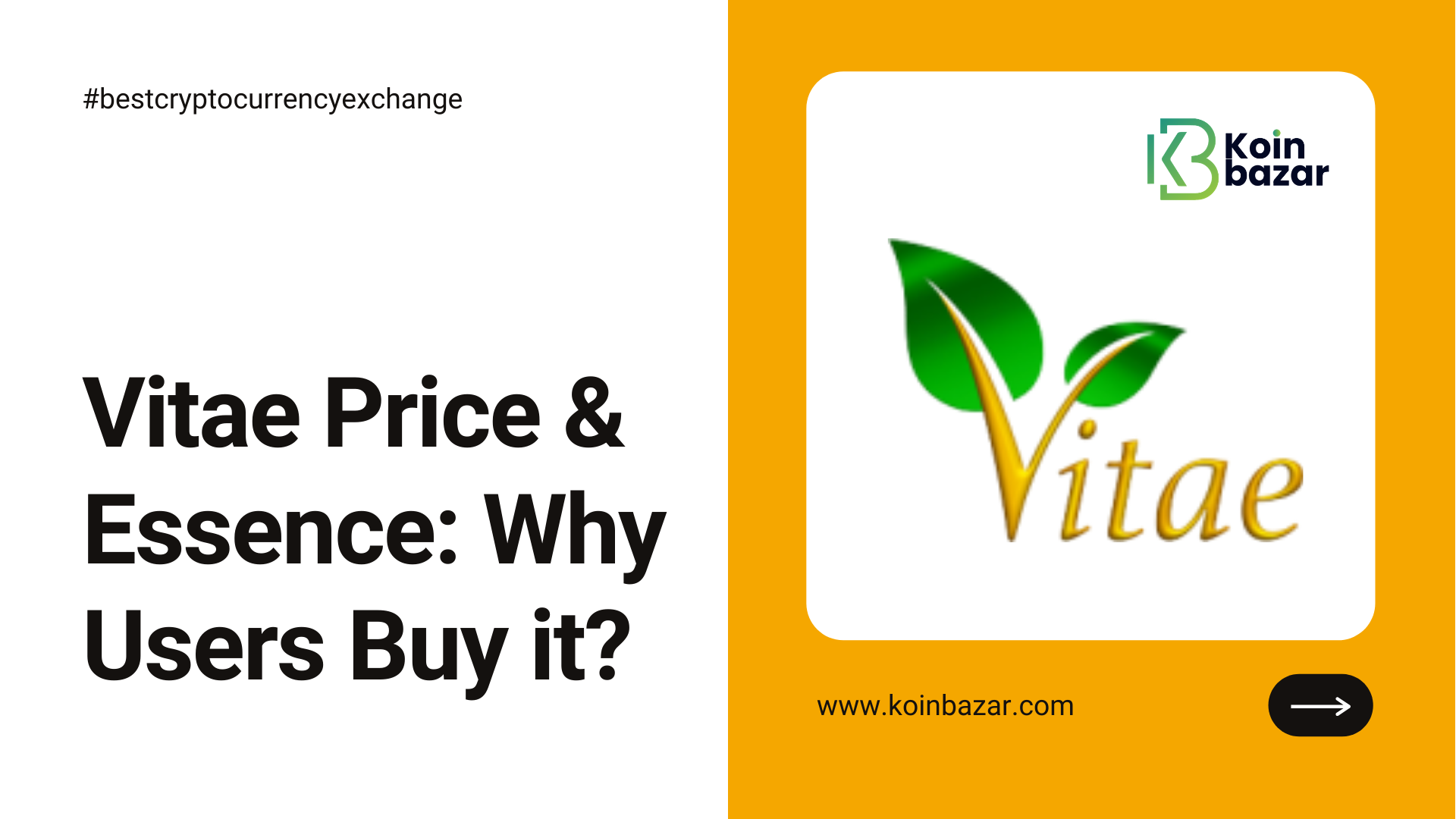 Article about Vitae Price and Essence: why Users Buy it